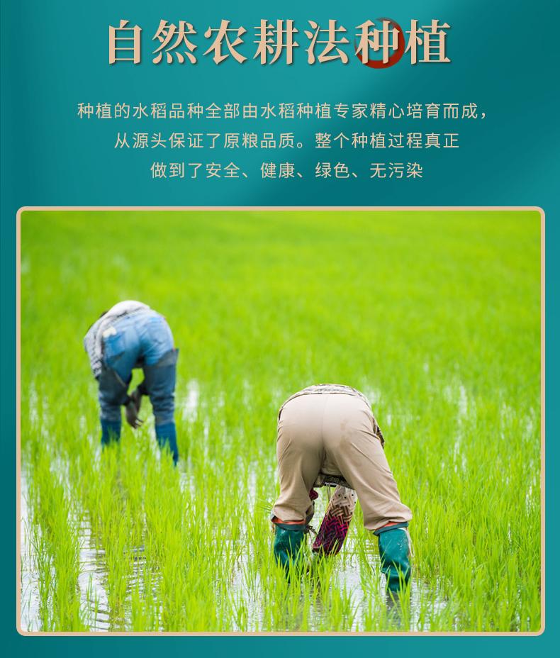 五常有机稻香鲜米