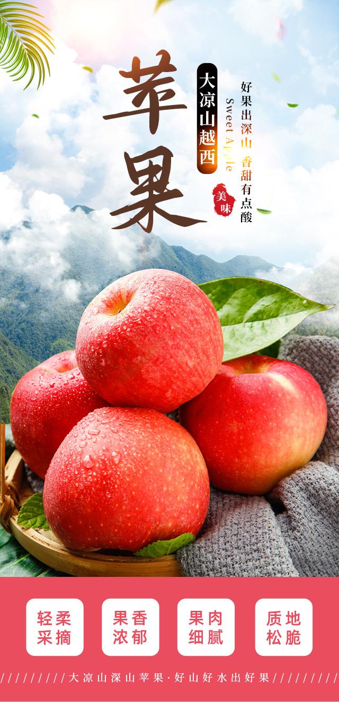 大凉山越西苹果